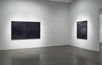 BRIAN FORREST - Installation View, December 2010, photograph, black and white, trees